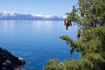 Tahoe-5559